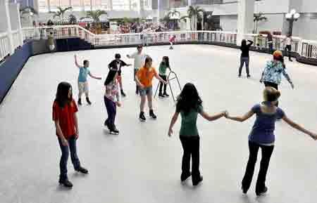 Ice Skate for Rental - Indoor