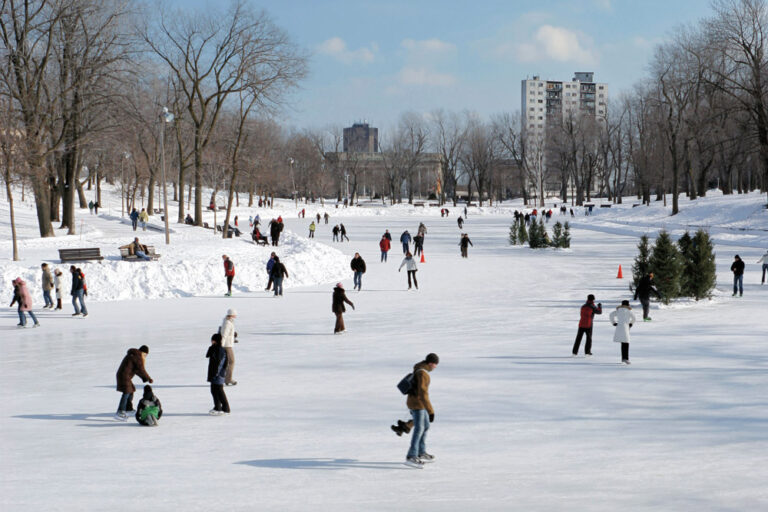 roce-rental-ice-skate-4